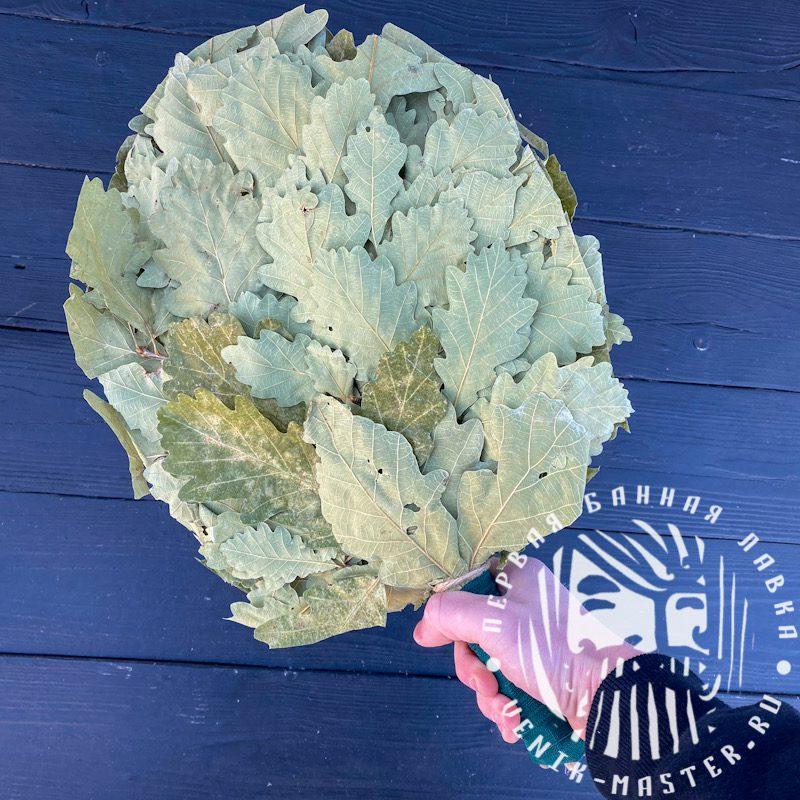 Веник из кавказского дуба Премиум 1